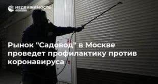 Рынок «Садовод» в Москве проведет профилактику против коронавируса