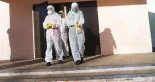 В России зарегистрировали 1154 новых случая заражения коронавирусом