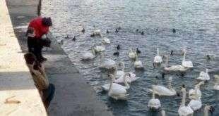Набережные реки Яузы преобразуют в «Суперпарк»