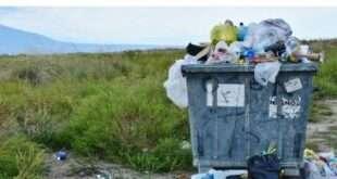 В Подмосковье установят более 1400 новых контейнеров для смешанных отходов