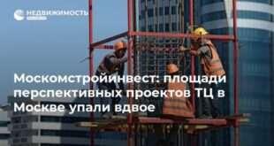 Москомстройинвест: площади перспективных проектов ТЦ в Москве упали вдвое
