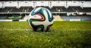 Эксперты проверят ход строительства ФОКа с футбольным манежем на территории стадиона «Торпедо»