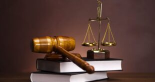 Какие вопросы задать адвокату на бесплатной юридической консультации?